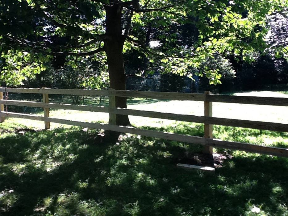 Post and Rail Fences 3